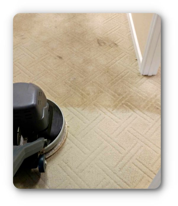 Carpet Cleaning of South Georgia